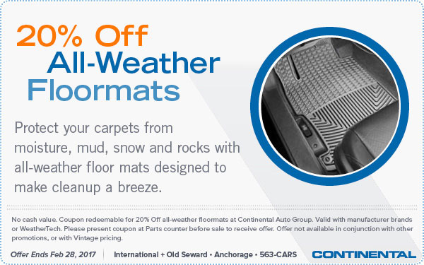 20 Percent Off All-Weather Floormats